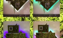 collage_licht